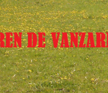 TEREN DE VANZARE